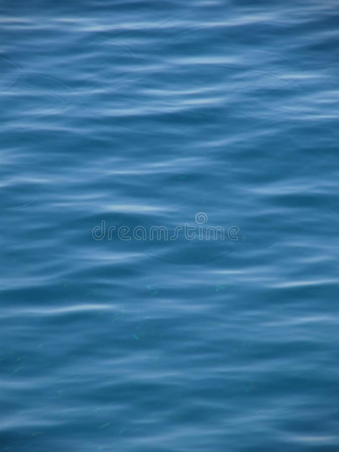 Small Fish Have A Fun In Blue Sea Stock Photo