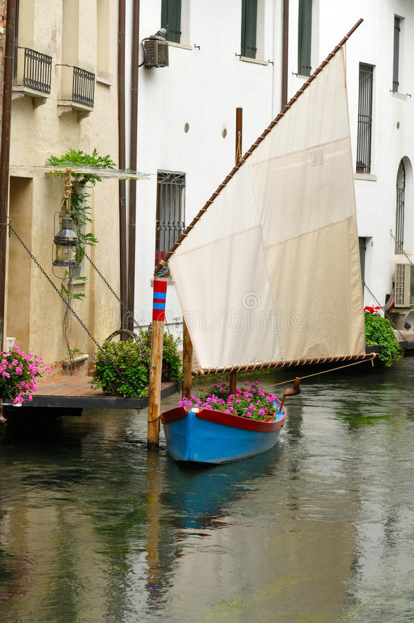 Small floral boat stock photography