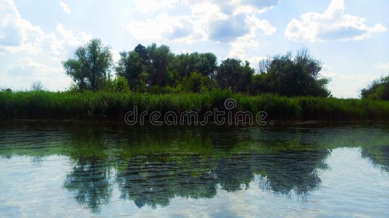 A small forest behind the river stock image