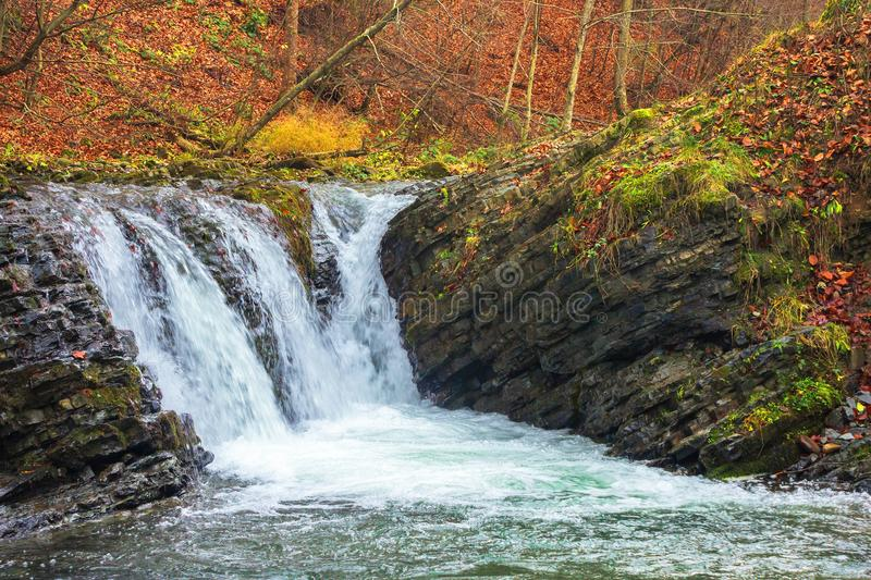 Small forest waterfall in autumn royalty free stock images
