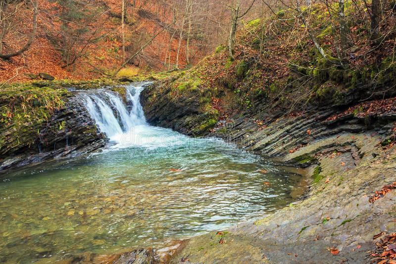 Small forest waterfall in autumn royalty free stock image
