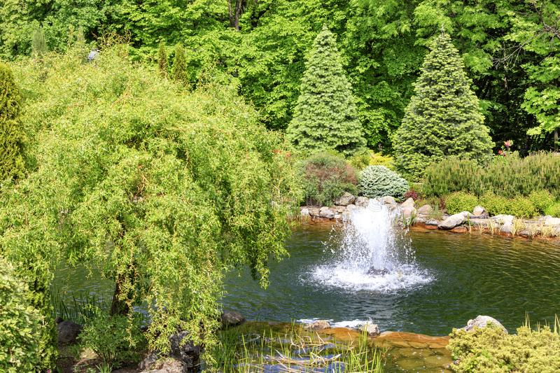 Decorative pond with a fountain in a beautiful summer park royalty free stock photos