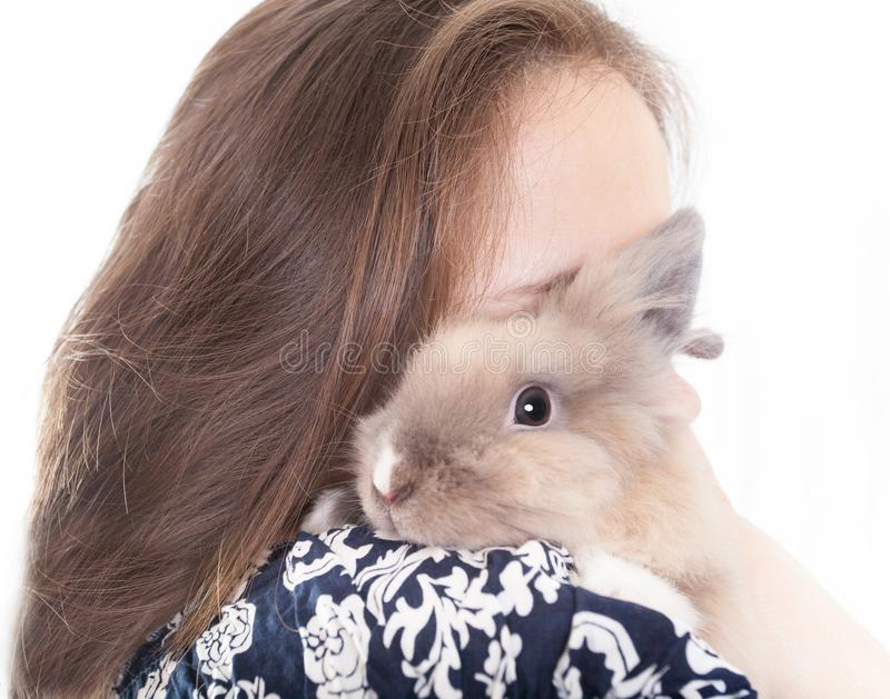 Small, funny Dutch decorative rabbit sits on the shoulder of a loving and caring hostess. Isolated on white background stock photo