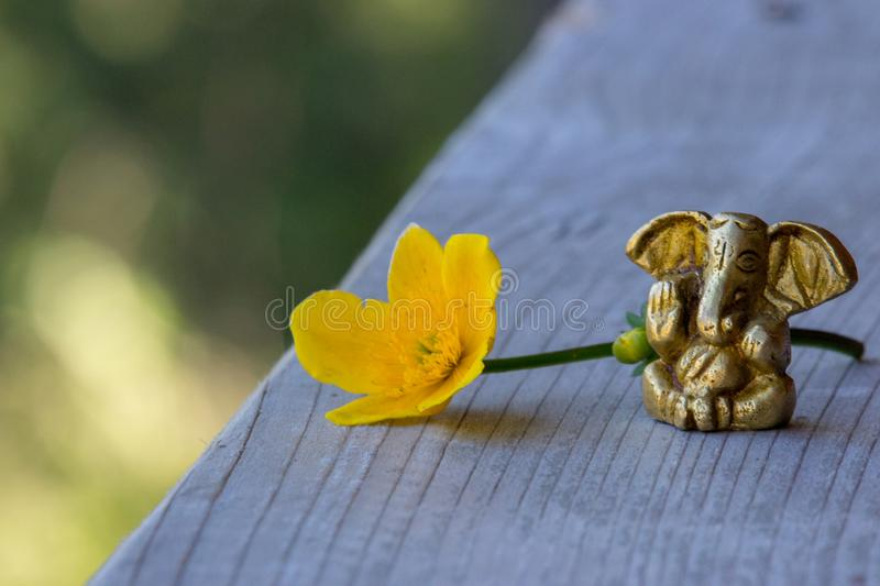 Small Ganesha figure with bright yellow flower. Beautiful Ganesh statue with open palm and blooming flower on wooden board. stock photography