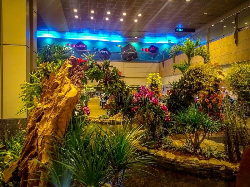 Small garden inside singapore airport, airport inside view, singapore airport royalty free stock photos