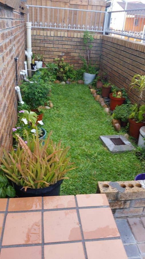 Small garden stock photography