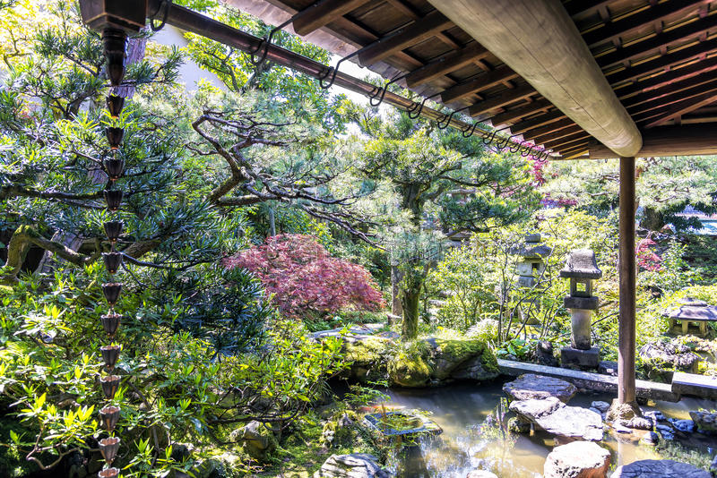 The small garden of Nomura samurai family residence Kanazawa, Japan royalty free stock image