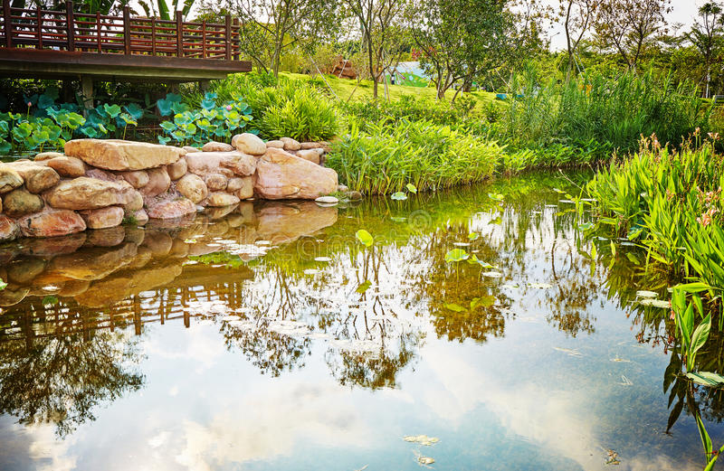 Small pond in backyard landscaping garden stock photo