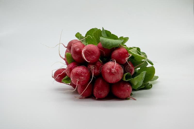 Small garden radish fresh from the market royalty free stock photography