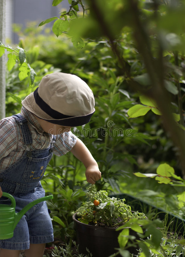 Download Small gardeners. stock image. Image of plants, small, helping - 4095525
