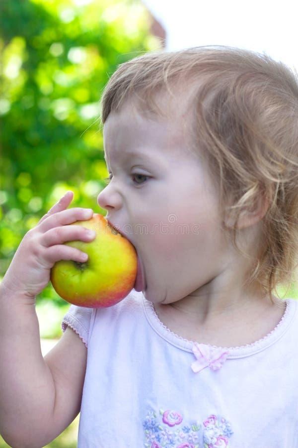 Small girl bite off juicy big apple royalty free stock photo