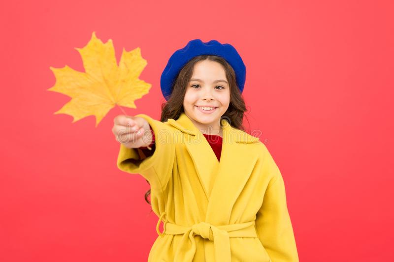 Small girl fall outfit red background. Hello october. Climate changes. Little girl welcome autumn. Kid girl cute face royalty free stock photo