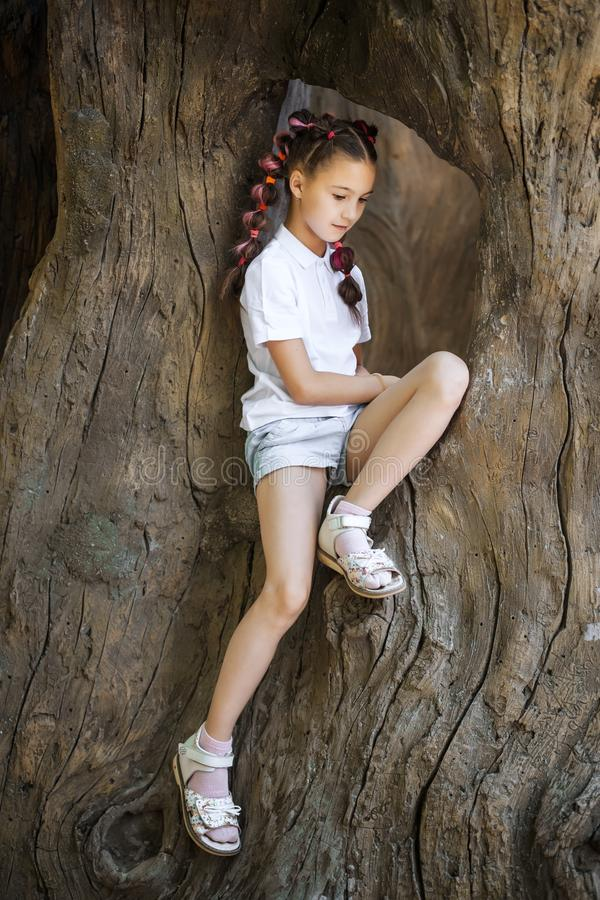 Small girl sitting in the tree. Pretty lovely small girl with pigtails wearing white shirt sitting in the stem of the old tree in the park royalty free stock photo