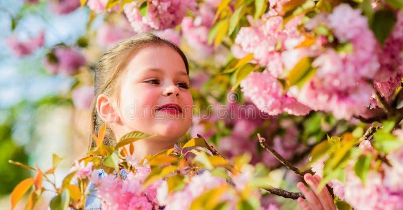 Small girl in spring flower bloom. blossom smell, allergy. skincare spa. Natural cosmetics for skin. happy girl in. Cherry flower. Sakura blooming. summer stock photo