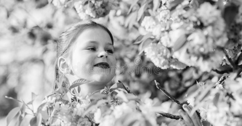 Small girl in spring flower bloom. blossom smell, allergy. skincare spa. Natural cosmetics for skin. happy girl in. Cherry flower. Sakura blooming. summer royalty free stock image