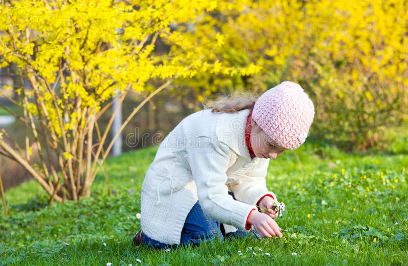 Download Small girl in spring park stock photo. Image of bush - 11060704