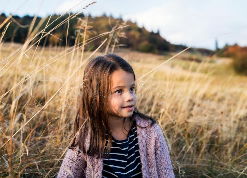 A small girl standing in autumn nature. royalty free stock photo