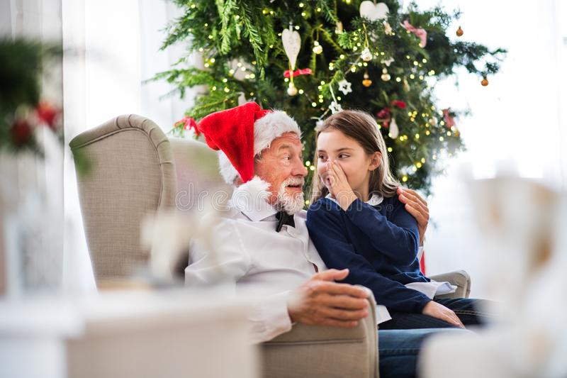 A small girl telling a secret to her grandfather with Santa hat at Christmas time. A small girl and her grandfather with Santa hat sitting on armchair at royalty free stock photos