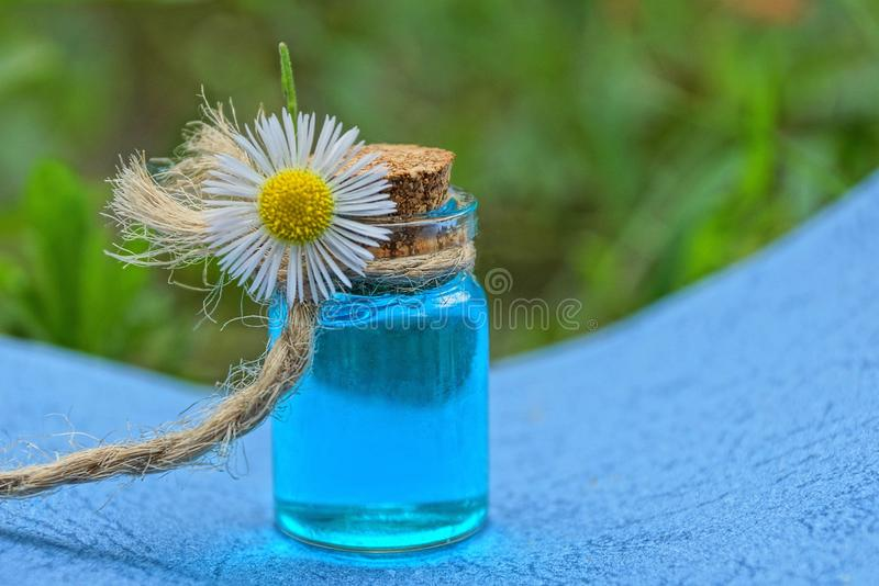 Small glass bottle with oil and white chamomile flower stock images