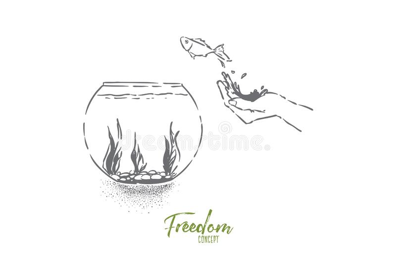 Small goldfish jumping in fishbowl, hand let fish go, domestic pet leap in glass aquarium with seaweed. Opportunity metaphor, freedom, liberty illusion concept stock illustration