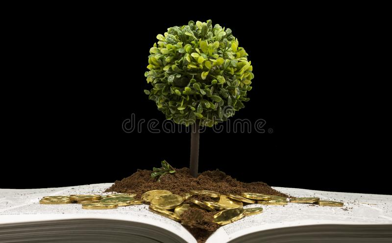 Investing in education , conceptual image royalty free stock image