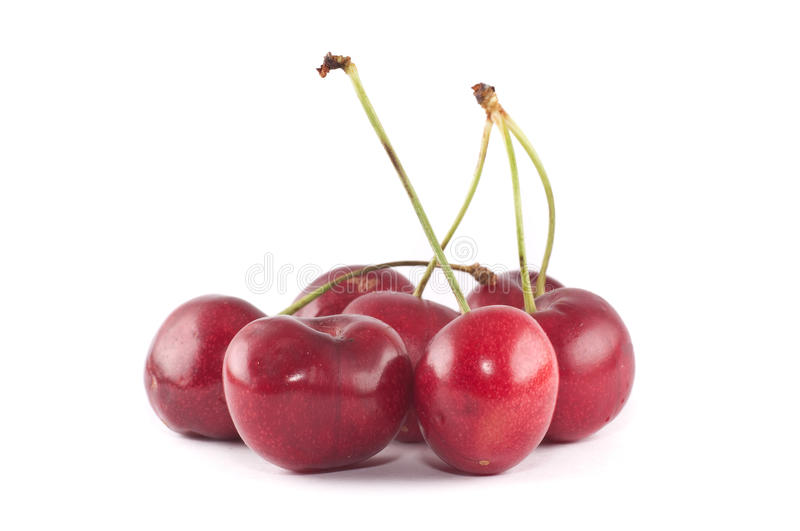 Small group of cherries stock image