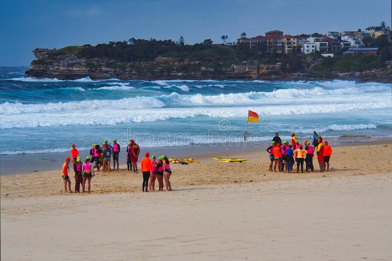 Small Groups of Life Guards on Bondi Beach, Sydney, Australia stock photography