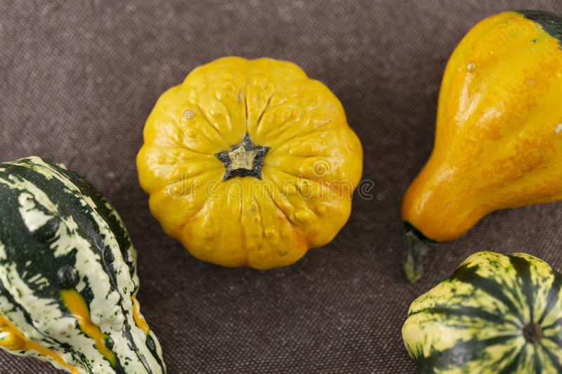 Small halloween pumpkins view from above stock photos