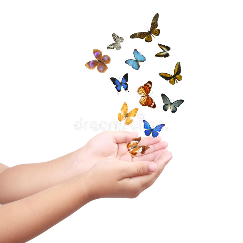Small hand releasing butterflies ,flying dreams. Colorful butterflies and small hand isolated on white royalty free stock images