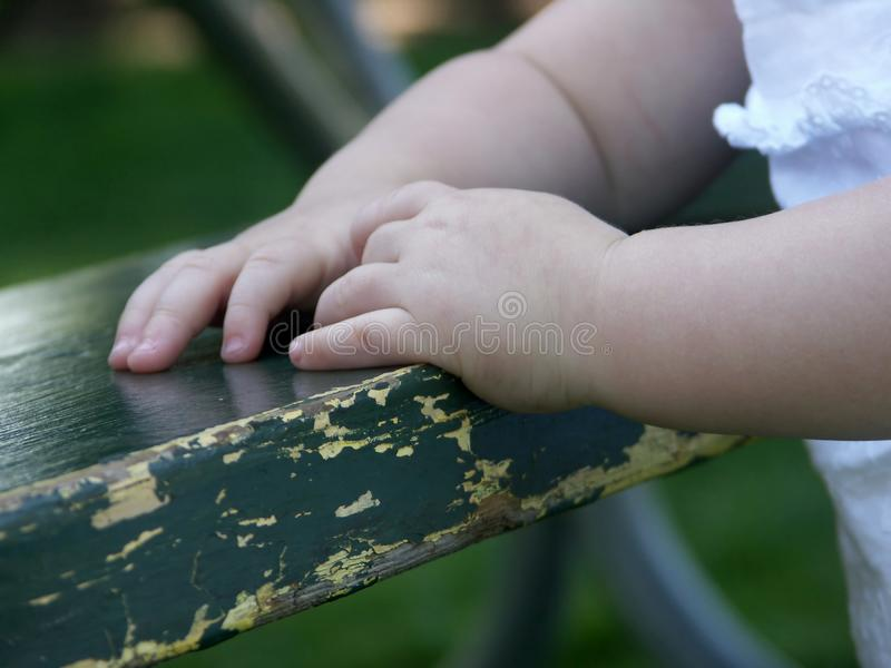 Download Small Hands stock photo. Image of small, tiny, fragile - 1085786