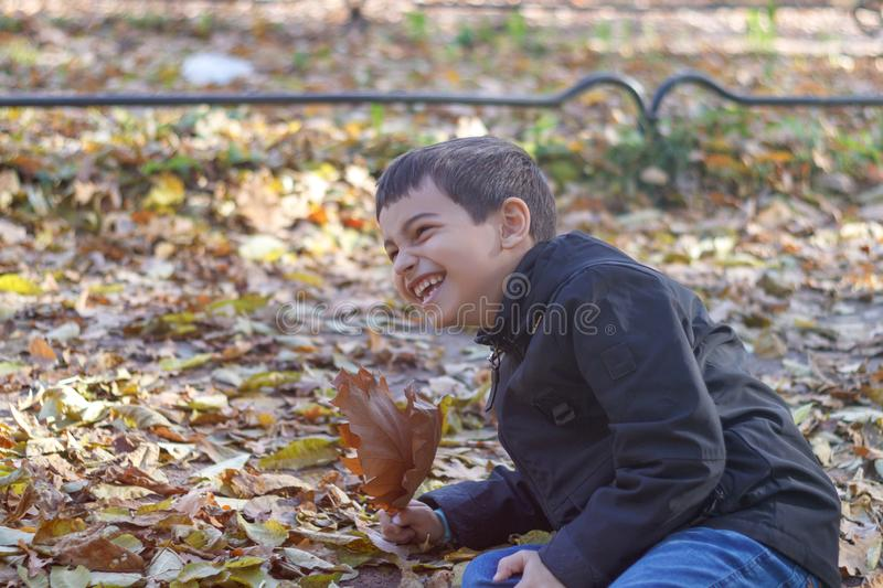 A small happy child fell into the leaves and laughs with joy in the autumn garden stock images