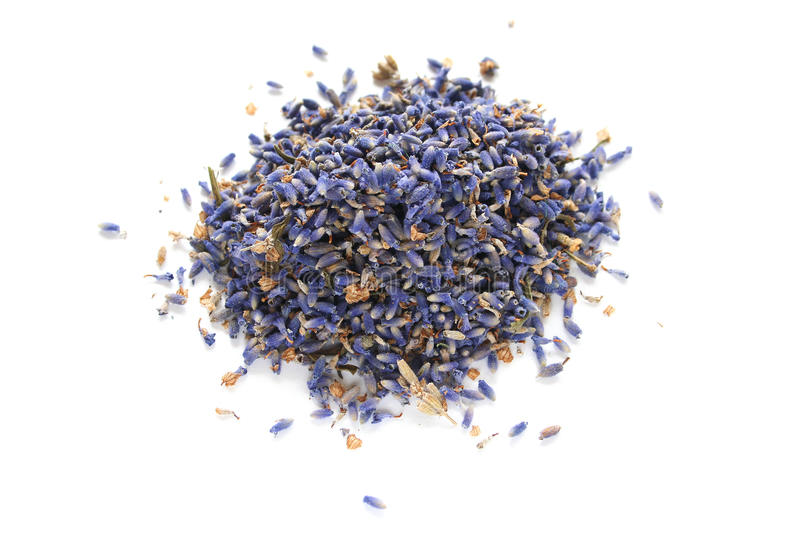 Small Heap of Dried Lavender Buds stock images