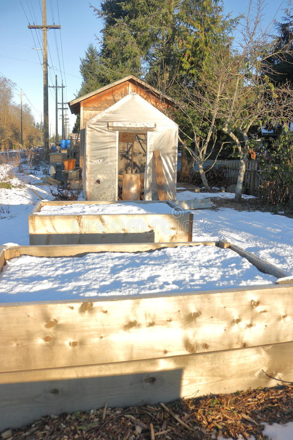 Small Homemade Garden Shed in Winter. A simple homemade garden shed standing behind a snow covered garden plot royalty free stock images