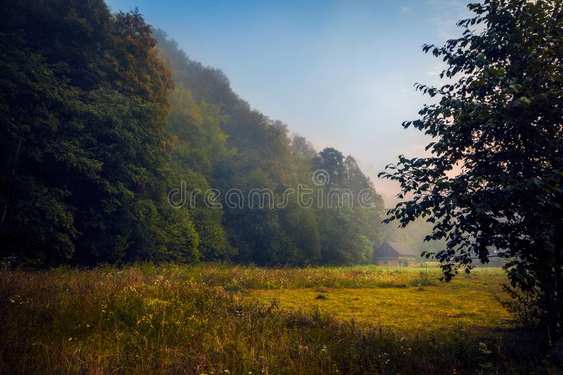 Small house found near a forest in the morning before sunrise wi. Small rural house from a village found near a forest in the morning before sunrise with fog in royalty free stock images