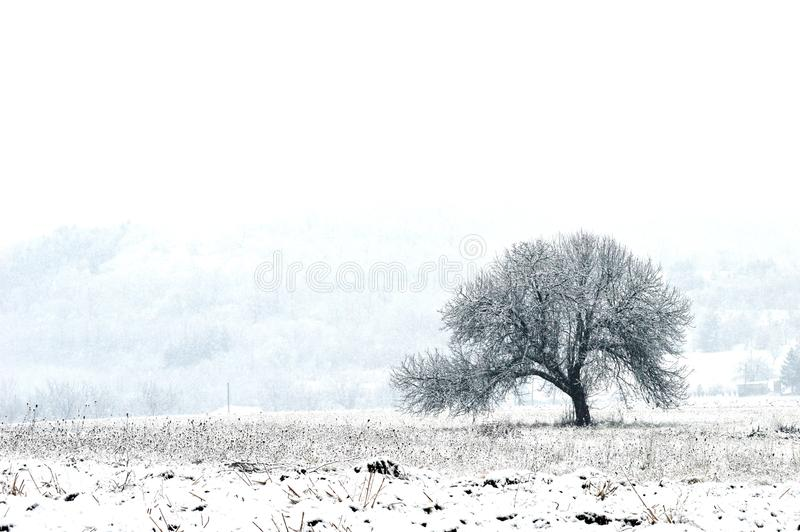 Small house at night in the snow. A small house at night in the snow royalty free stock image