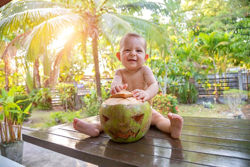 A small infant baby with a sly face sits on a table against the background of the tropics and holds a coconut which is made in the royalty free stock photos