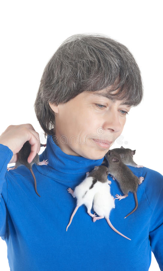 Download Small infant rats stock image. Image of clothing, blue - 26075967