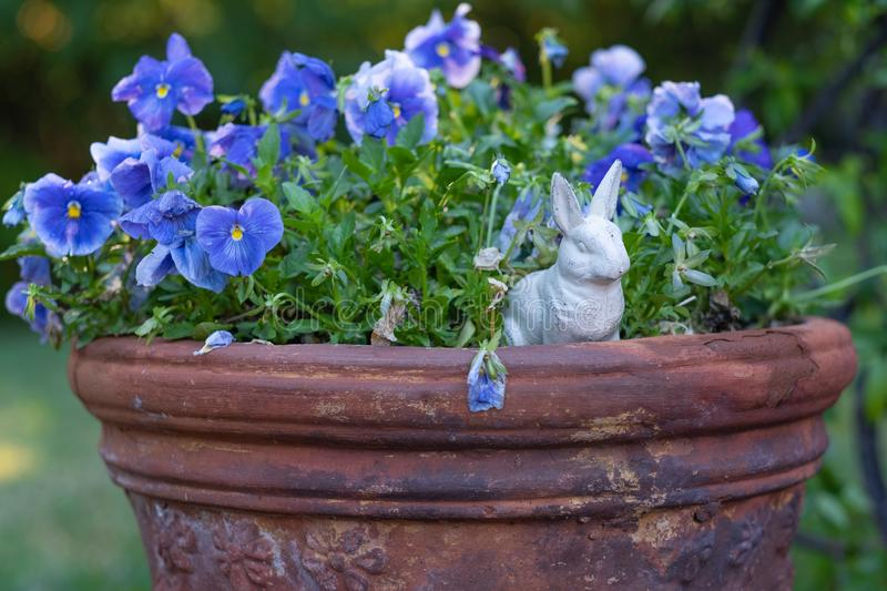A tiny taste of Easter among the blooms. A small iron bunny peeks out from blue blossoms during the Easter season royalty free stock photo