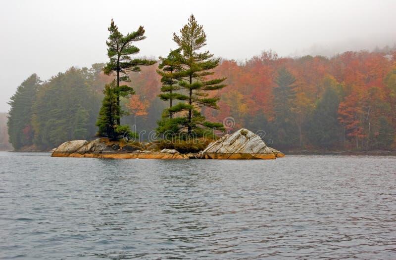 Download Small island stock photo. Image of nature, foliage, mist - 3597348