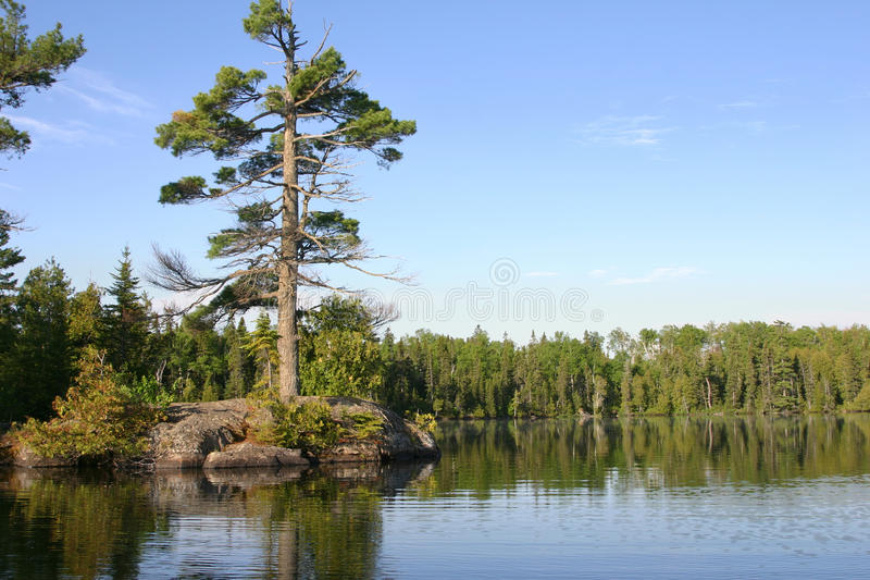 Small island with big pine on calm Minnesota lake. Small rocky island with big pine on calm northern Minnesota lake stock image