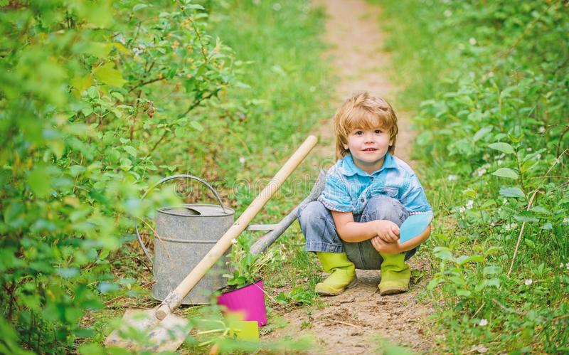 Small kid gardener planting a flower. earth day. Eco life. summer activity. happy child farmer use garden shovel, spring royalty free stock image