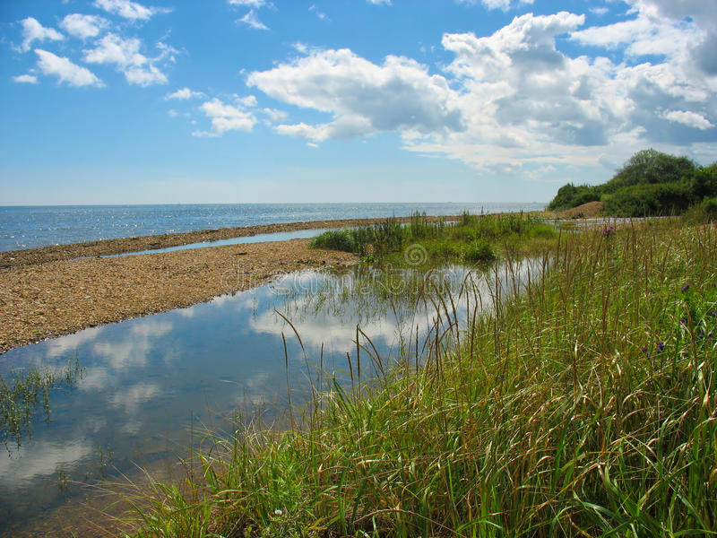 Small lagoon near a sea. Summer landscape royalty free stock photography