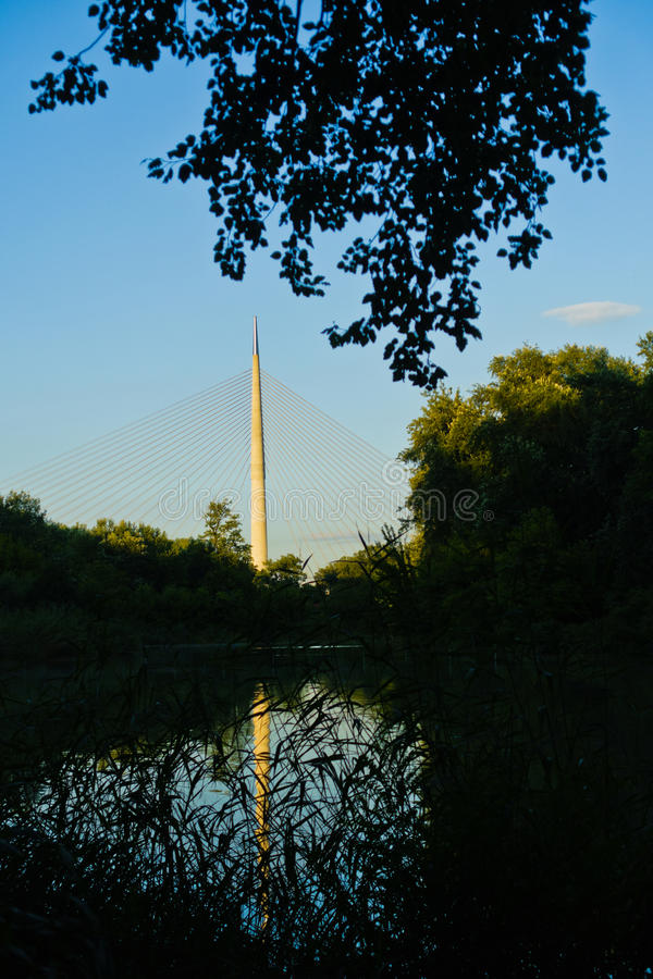 Small lake with Ada cable bridge in a background, Belgrade. Serbia royalty free stock image