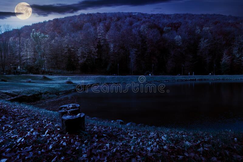 Small lake in autumn park at night stock photography