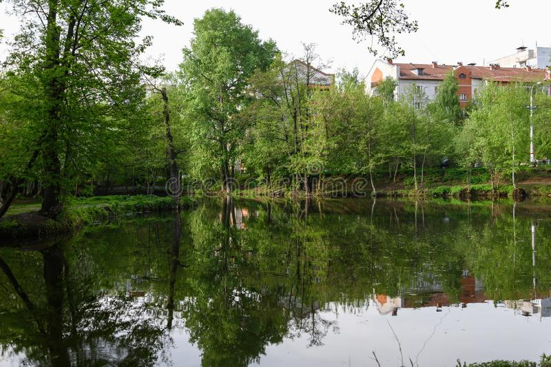 Small lake in the city surrounded by trees. Spring. stock images