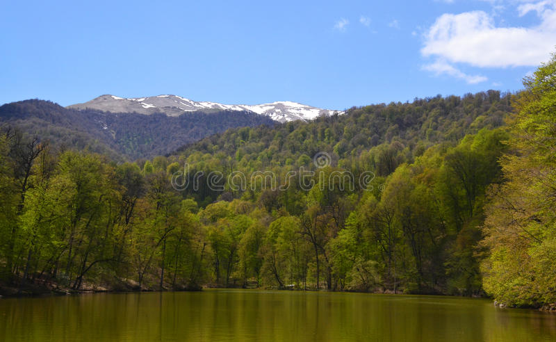 Small lake in Dilijan, Armenia. Small lake and forest in the spring. Dilijan, Armenia stock photography