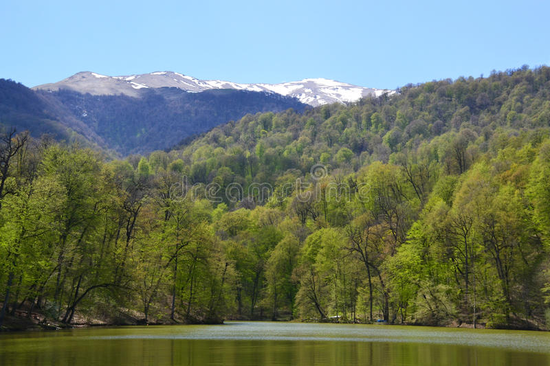 Small lake in Dilijan, Armenia. Small lake and forest in the spring. Dilijan, Armenia stock photo