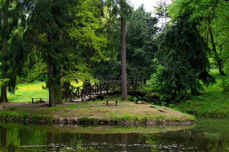 Small lake in a forest with trees and a bridge in Zamecky Park, in Hluboka nad Vltavou Czech Republic.  royalty free stock photo