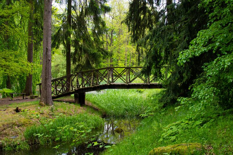 Small lake in a forest with trees and a bridge in Zamecky Park, in Hluboka nad Vltavou Czech Republic.  stock images