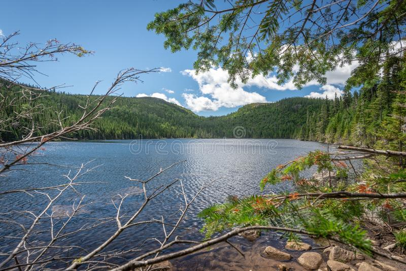 Small lake in Les Grands-Jardins National Park, Quebec. Framed view on a small lake in Les Grands-Jardins National Park, province of Quebec, Canada stock photography